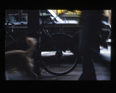 girlanddog001-2