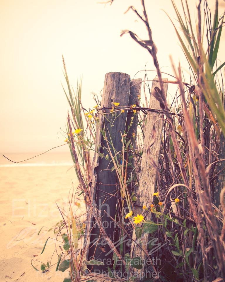 SandyFence